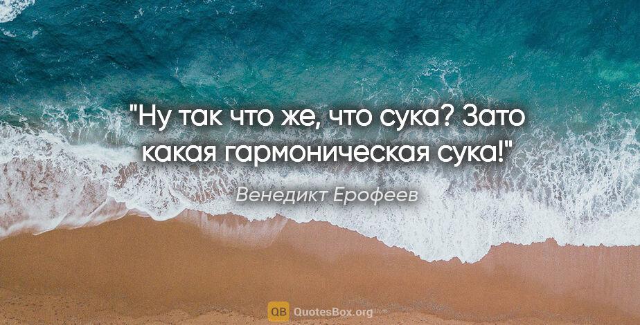 """Венедикт Ерофеев цитата: """"Ну так что же, что «сука»? Зато какая гармоническая сука!"""""""